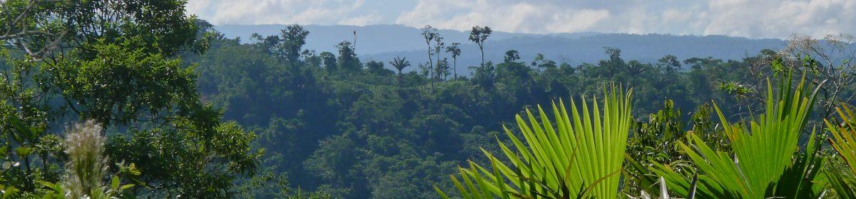 Indigenes Wissen & der Klimawandel