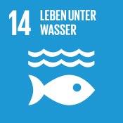 Sustainable Development Goals_icons-14